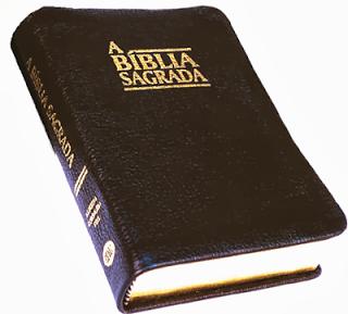 >>> BAIXE GRÁTIS A BÍBLIA SAGRADA ACF-2007 EM PDF