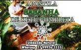 APOSTILA SASANHA DE KETÚ COMPLETA