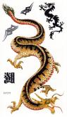 Tatuagem Temporária Dragão
