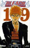 Bleach - Vol. 19