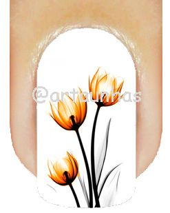Película Tulipa 06