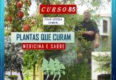 85. PLANTAS QUE CURAM