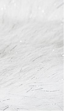 CRAFT FUR Plus (White)