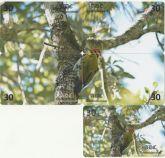 Serie Pica-pau-dourado Pulzzle
