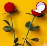 Rosa para Caixinha de Anel  #816