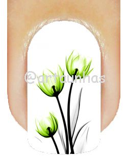 Película Tulipa 14