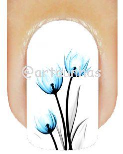 Película Tulipa 11