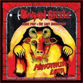 BARON STEELE - Minotaur's Lair (2015 - Texas Metal Underground / USA) (LP)