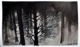 Árvores - 3