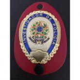 Distintivo Investigador de Polícia Civil Nacional