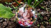 Bola de Natal Personalizadas - 20 unidades