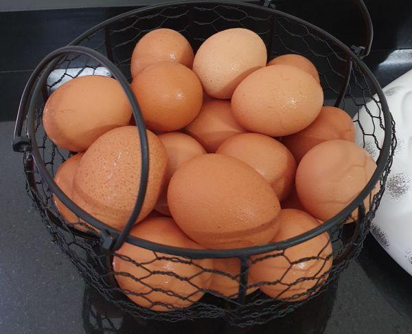 Suporte de Metal Para Ovos (Cesta Aramada com tampa em Cerâmica) - Madô