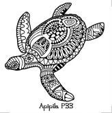 Apipila Media P33