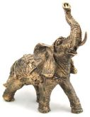 Elefante Indiano G