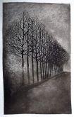 Árvores - 1