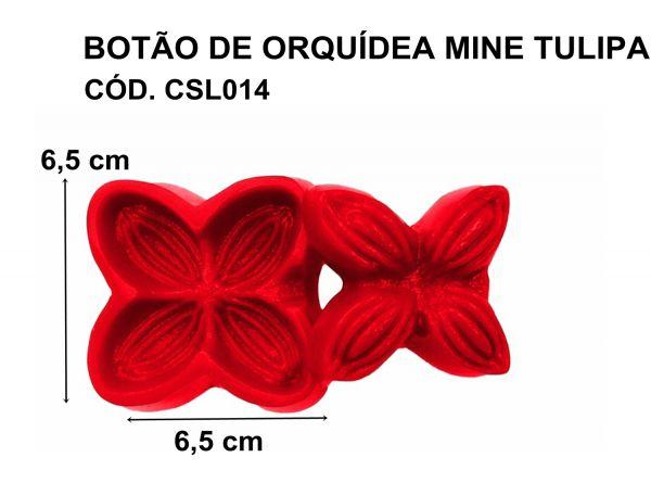 BOTÃO DE ORQUÍDEA / MINE TULIPA