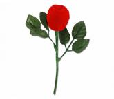 Botão de rosa de veludo para Alianças, em Uberlândia, Modelo RO008