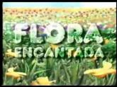 DVD Novela Infantil Flora Encantada - Frete Gratis