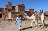 Marrocos 11 dias - Royal Air Marocos