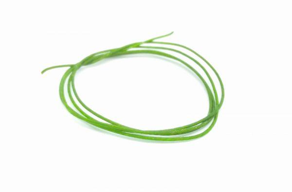 CG - CATGUT BIOTHREAD (Green)