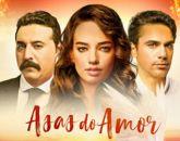 DVD Novela Asas do Amor - Em 11 Dvds - Dublada - Frete Grátis