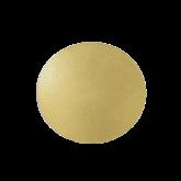 Disco Ouro 23cm