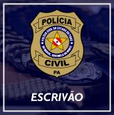 (Plano de Estudos) ESCRIVÃO PC-PA