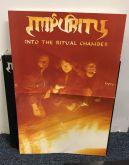 LP 12' - Impurity - Into the Ritual Chamber - Vinil Split Color