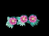 Kit Flores de Papel Pink 3un