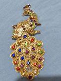 Pavão Dourado Colorido