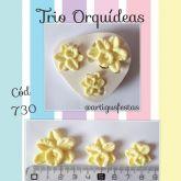 Trio Orquídeas