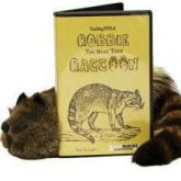 Robbie the Raccoon com DVD    #478