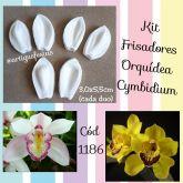 Frisadores Orquídea Cymbidium
