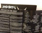 LP 12' - Impurity - Into the Ritual Chamber - Vinil preto