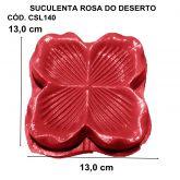 SUCULENTA ROSA DO DESERTO