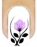 Película Tulipa 74