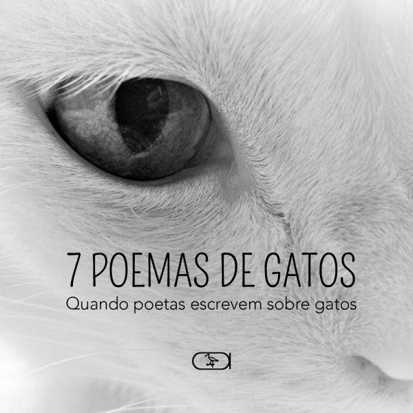 7 Poemas de gatos