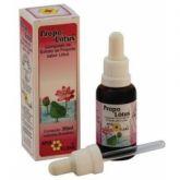 Propolótus (extrato de própolis com lótus) 30 ml