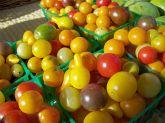 Tomates variados frete gratis