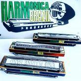 Hohner marine band classic custom