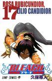 Bleach - Vol. 17