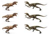 Papel Arroz Dinossauro Faixa Lateral A4 011 1un