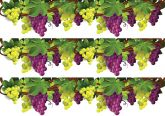 Papel Arroz Frutas Faixa Lateral A4 005 1un