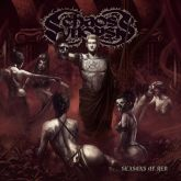 Chaos Synopsis - Seasons Of Red (2015)(Nacional)