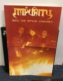 IMPURITY - Into the Ritual Chamber - LP (180g, Gatefold)