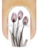 Película Tulipa 22