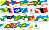 Mini Bandeira Brasil E Estados Bordada 3x4,5cm Frete 14,00R$