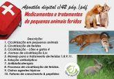 zz  Medicamentos e tratamentos de pequenos animais feridos