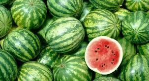 Vinheta carro da melancia