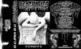 Agathocles - It Is What It Is (CASSETE)